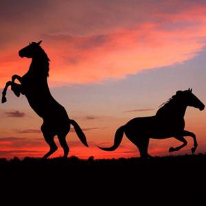 Любэ - Конь
