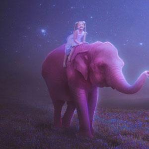 Fleur - Розовый слон