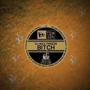 Рингтон DJ Max Freeze - Bitch